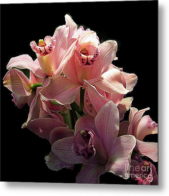 Spray Of Pink Orchids Metal Print by Merton Allen