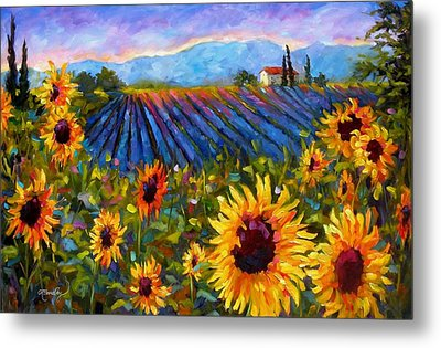 Spread A Little Sunshine Metal Print by Chris Brandley