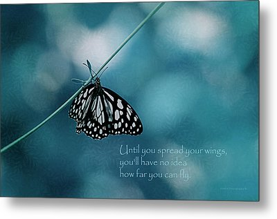 Spread Your Wings Metal Print by Maria Angelica Maira