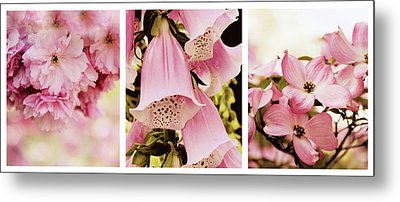 Metal Print featuring the photograph Spring Assemblage Triptych by Jessica Jenney