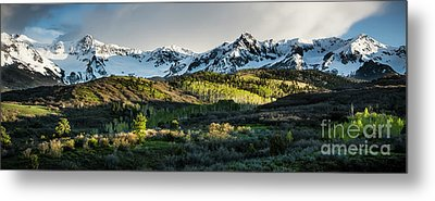 Metal Print featuring the photograph Spring At Dallas Divide  by The Forests Edge Photography - Diane Sandoval