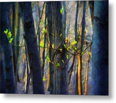 Spring Awakening In The Forest Metal Print