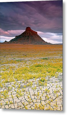 Metal Print featuring the photograph Spring Bloom At Factory Butte. by Johnny Adolphson