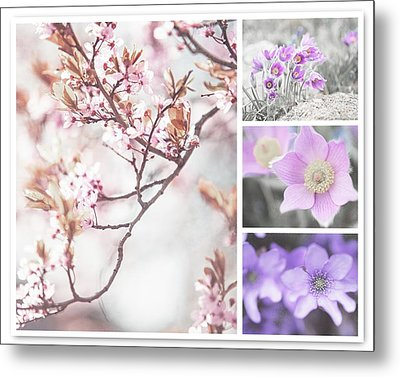 Metal Print featuring the photograph Spring Bloom Collage 1. Shabby Chic Collection by Jenny Rainbow
