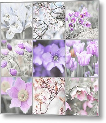 Metal Print featuring the photograph Spring Bloom Collage. Shabby Chic Collection by Jenny Rainbow