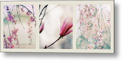 Metal Print featuring the photograph Spring Blossom Triptych by Jessica Jenney