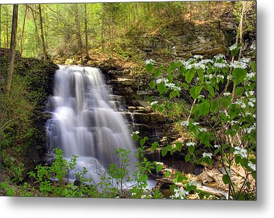 Metal Print featuring the photograph Spring Blossoms Grace Erie Falls by Gene Walls