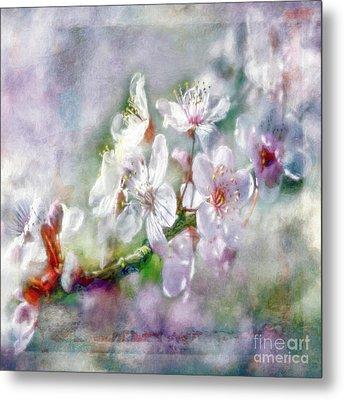 Spring Blossoms Metal Print by Jean OKeeffe Macro Abundance Art