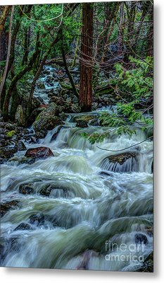 Spring Bridalveil Creek In Yosemite Metal Print