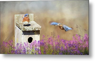 Metal Print featuring the photograph Spring Builders by Lori Deiter