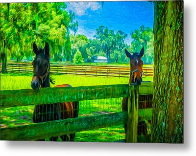 Metal Print featuring the painting Spring Colts by Louis Ferreira