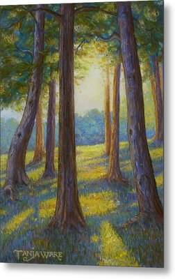 Spring Comes To Indian Point Metal Print by Tanja Ware