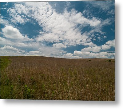 Metal Print featuring the photograph Spring Creek Prairie by Joshua House