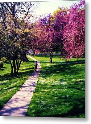 Spring Day Metal Print by John Scates
