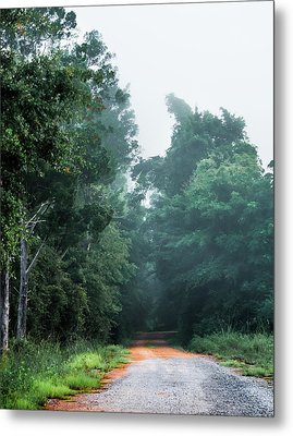 Metal Print featuring the photograph Spring Dirt Road by Shelby Young