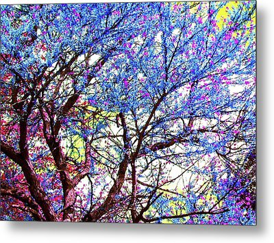 Metal Print featuring the photograph Spring Fantasy by Susan Carella