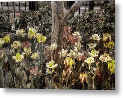 Metal Print featuring the photograph Spring Flowers by Joann Vitali