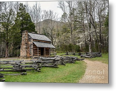 Spring For The Settlers Metal Print by Debbie Green