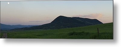 Metal Print featuring the photograph Spring Green On Elk Montain by Daniel Hebard