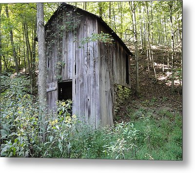Spring House Metal Print by Terry  Wiley