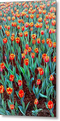 Spring In Holland Metal Print by Ian Gledhill