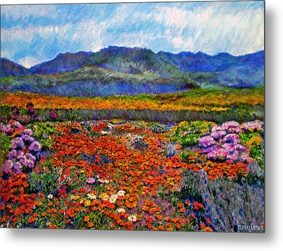 Spring In Namaqualand Metal Print by Michael Durst