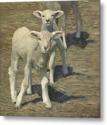Spring Lambs Brothers Metal Print by John Reynolds