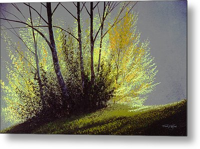 Spring Light Metal Print