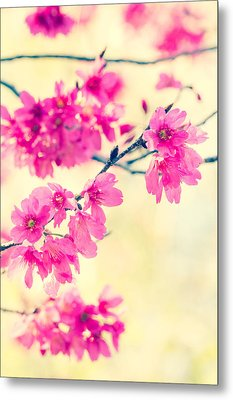 Metal Print featuring the photograph Spring Magic by Julie Andel
