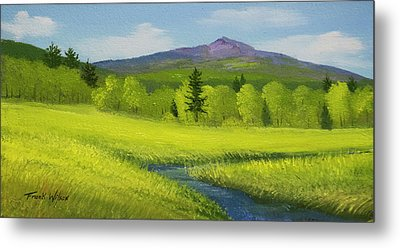 Metal Print featuring the painting Spring Meadow Brook by Frank Wilson