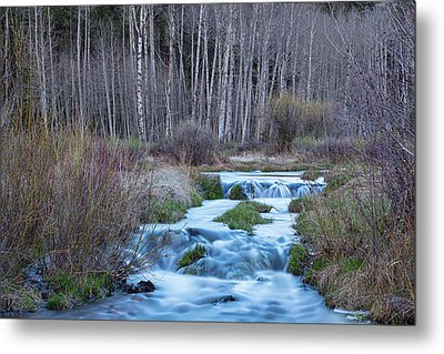 Spring Melt Off Flowing Down From Bonanza Metal Print by James BO Insogna