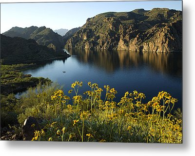 Spring Morning At The Lake Metal Print