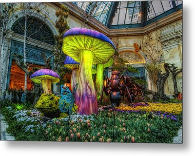 Spring Mushrooms Metal Print by Stephen Campbell