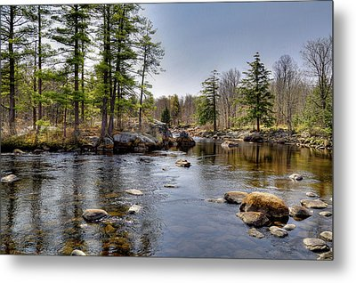 Metal Print featuring the photograph Spring Near Moose River Road by David Patterson