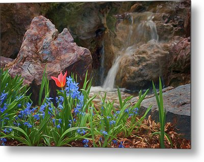 Metal Print featuring the photograph Spring  by Nikolyn McDonald