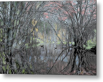 Spring On The Backwater Metal Print