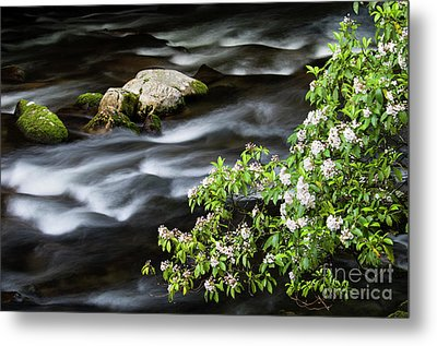 Metal Print featuring the photograph Spring On The Oconaluftee River - D009923 by Daniel Dempster
