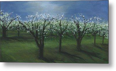 Spring Orchard Metal Print