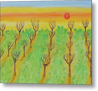 Spring Orchard Sunset Metal Print