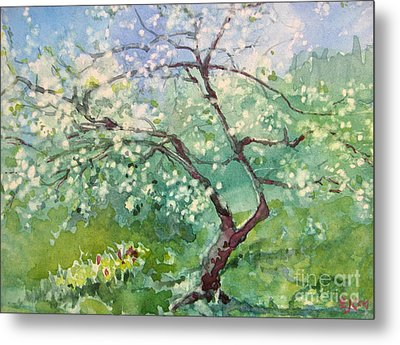 Metal Print featuring the painting Spring Plum by Elizabeth Carr