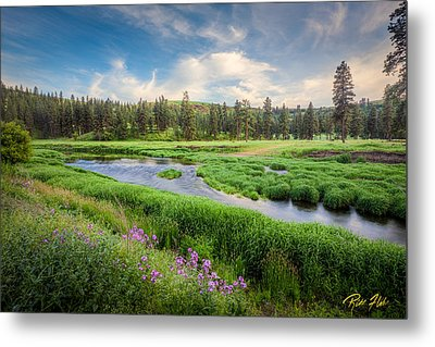 Metal Print featuring the photograph Spring River Valley by Rikk Flohr