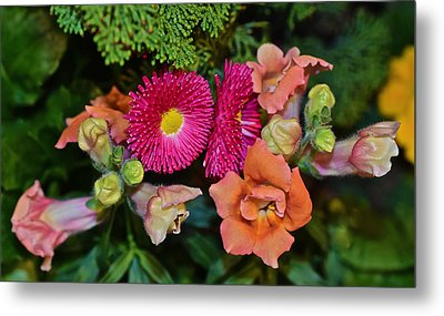 Spring Show 15 Snapdragons And English Daisy Metal Print by Janis Nussbaum Senungetuk
