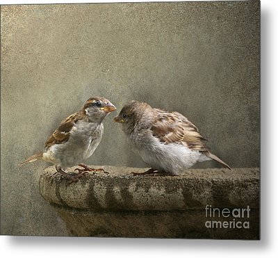 Spring Sonnet Metal Print by Jan Piller