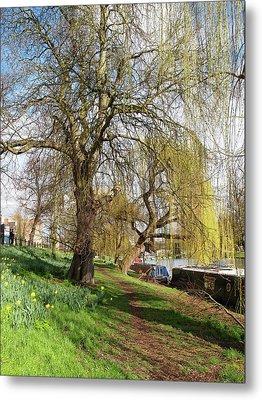 Spring Sunshine On Cambridge Riverbank Metal Print by Gill Billington