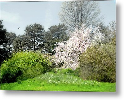Metal Print featuring the photograph Spring Treasures by Diana Angstadt