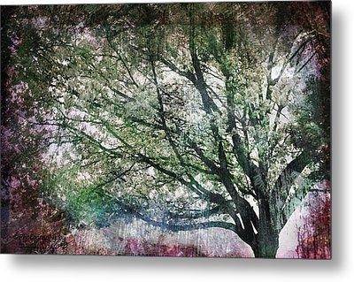 Spring Tree Metal Print by Gray  Artus