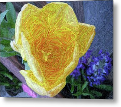 Metal Print featuring the photograph Spring Tulip by Susan Carella