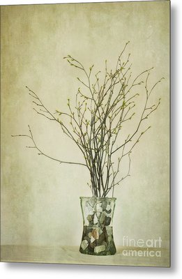 Spring Unfolds Metal Print by Priska Wettstein