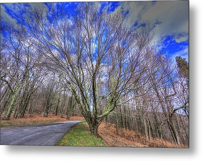 Spring Version Of The Autumn Drive Metal Print by Shannon Louder