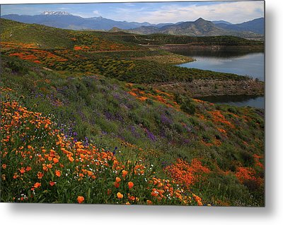 Metal Print featuring the photograph Spring Wildflowers At Diamond Lake In California by Jetson Nguyen